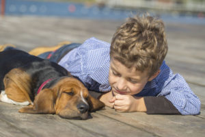 Alamo Water Softeners loves the San Antonio Humane Society - Dog and Boy